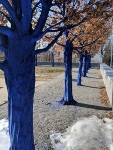 The Blue Trees at the Currier Museum in Manchester, NH